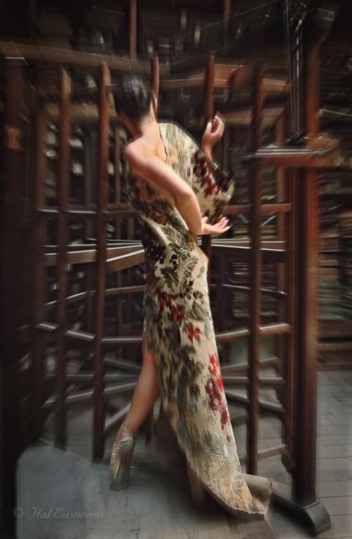 vanishing-venice-by-hal-eastman-24_ValentinaMoar
